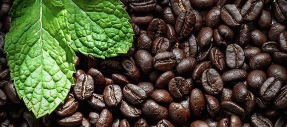 caffespa